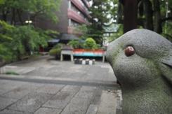 岡崎神社 rabbit statue